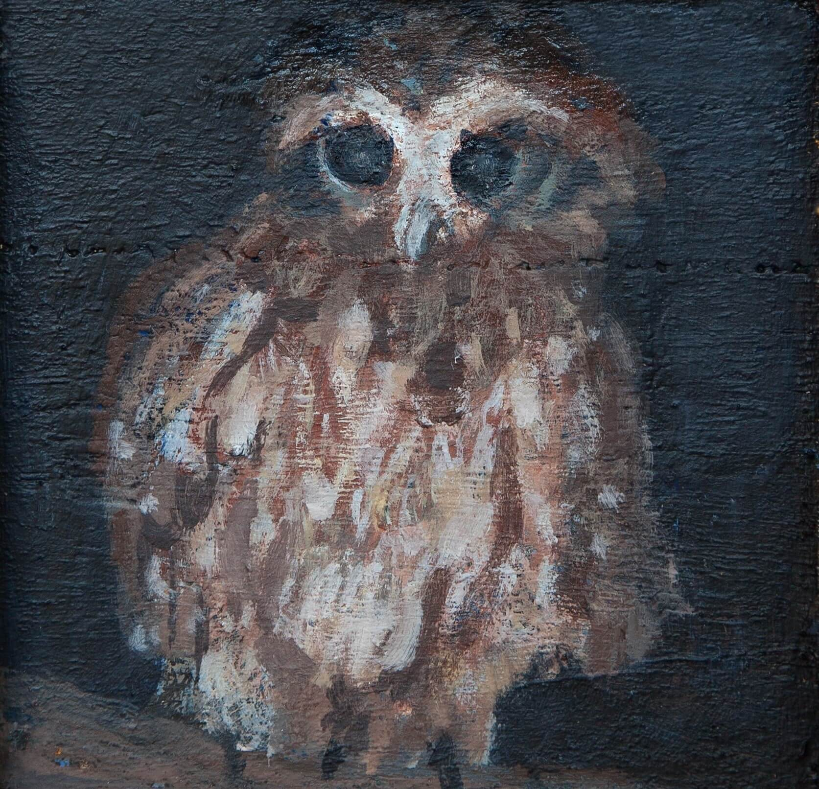 Owl beliefs in nyungar culture anthropology from the shed plate 1 boobok owl 2016 acrylic on jarrah by emily ten raa biocorpaavc Images