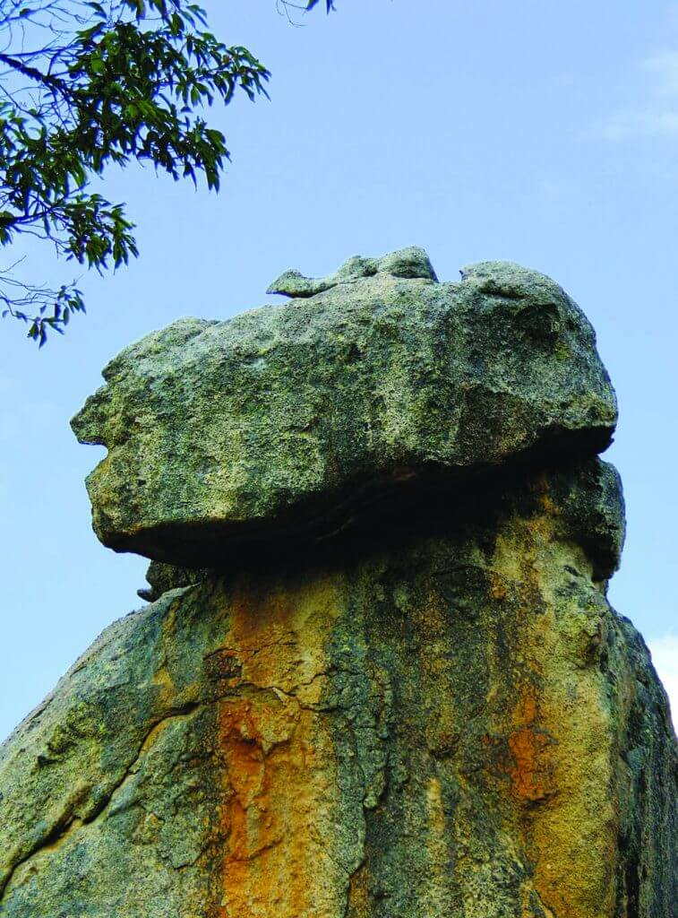 """Head"" of ""Owl Stone"""